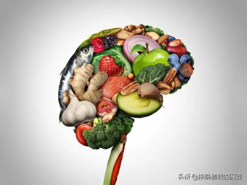 哪些食物有助于预防老年痴呆?